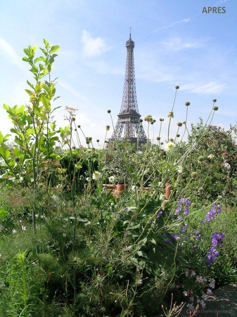 Jardin sur une terrasse parisienne avec vue sur la Tour Eiffel